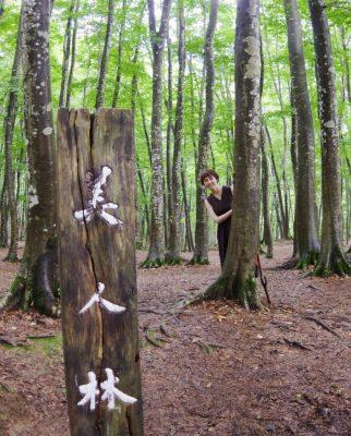 美人林と、星峠の棚田